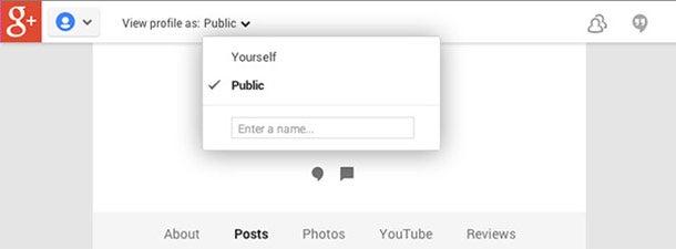 Twelve Things You Should Do on Your Personal Google+ Account Right Now - google public profile