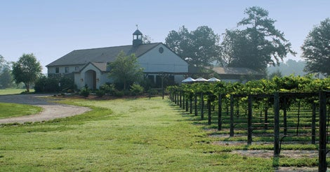 The Mother of all Wineries