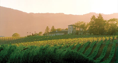Experience the Luxury of Hall Wineries