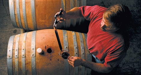 The Art of Winemaking