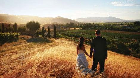 The Italian Gateway to Sonoma Valley