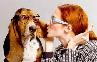 Warby Parkers Grand Vision: Innovating Eyewear Through Social Media