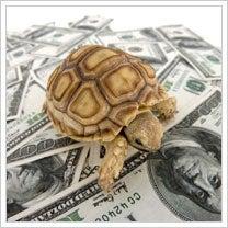slow-loan.jpg