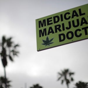 Where Marijuana Is Legal HR Policy Needs to Adjust