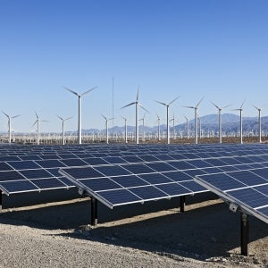 What You, Entrepreneur, Can Do to Support Green Energy