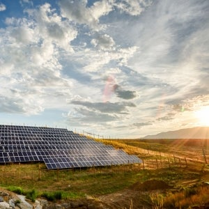 Solar Energy Has Big Apple Potential But New York Real Estate Entrepreneurs Haven't Seen the Light