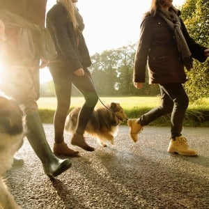 4 Steps For Growing Your Business at the Dog Park