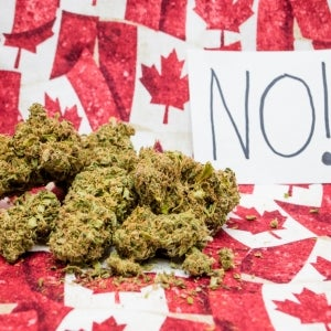 Border Officials Are Banning Canadians Who Admit They've Smoked Marijuana