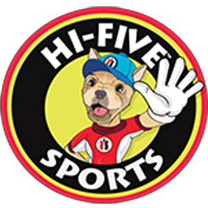 Hi-Five Sports Franchising