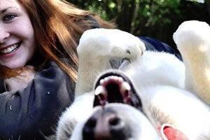 Franchise Players: A Pet Care Franchisee Changed Her Life at 21