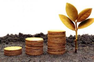 The Secret Factors That Win Funding