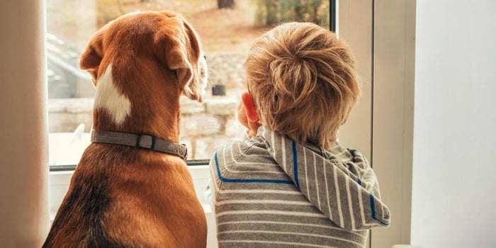 Use the 'Puppy' Approach to Close More Sales