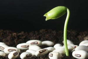 The Recipe For Great Crowdfunding Success