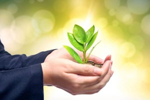 Why Core Values Drive Business