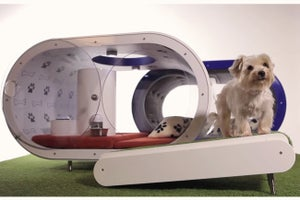 For $30K, Your Dog Could Have a House With a Hot Tub