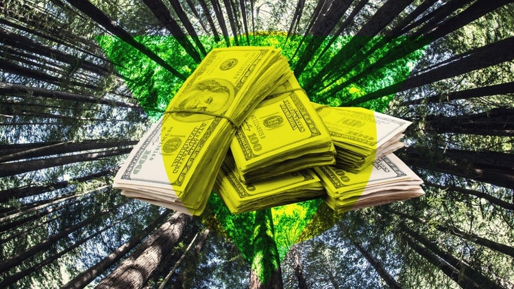 A Benefit Corporation Can Have a Positive Impact on the World -- and Still Make a Profit