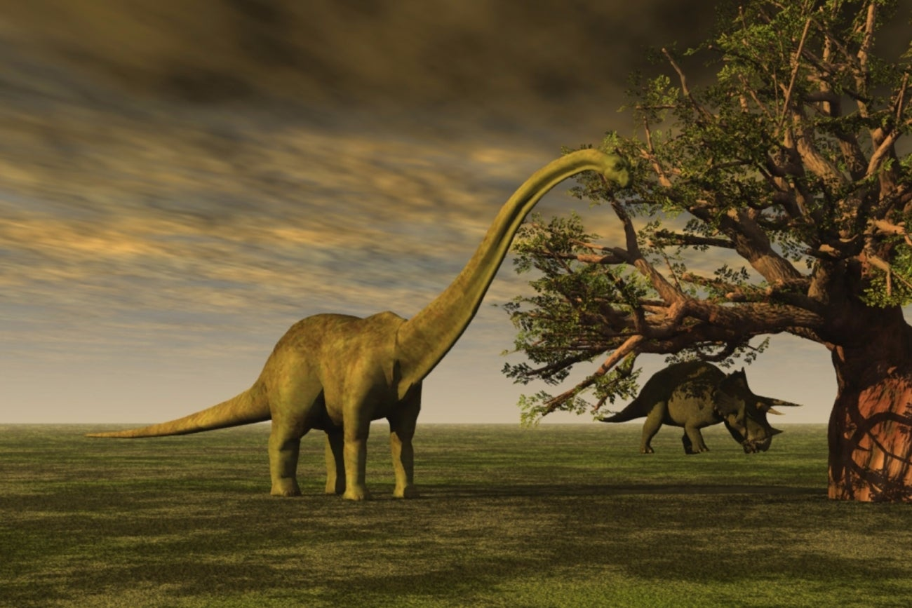 If The Brontosaurus Can Make A Comeback So Can You