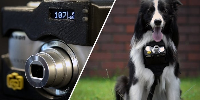 Old Dog, New Pics: This New Nikon Camera Case Let's Your Pup Snap Photos