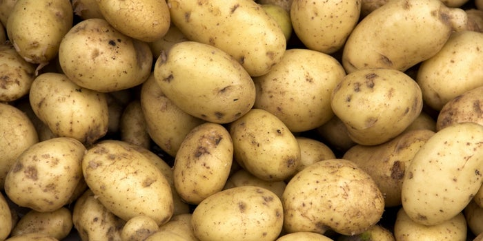 Forget Glitter: The New Thing to Ship Your Enemies Is a Potato