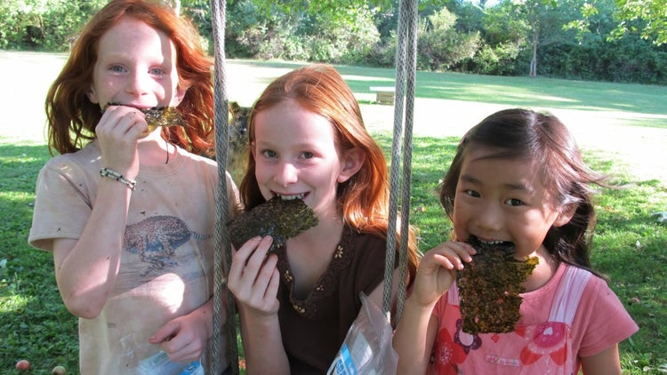 How a Health-Conscious Mom Convinced Millions to Snack on Seaweed