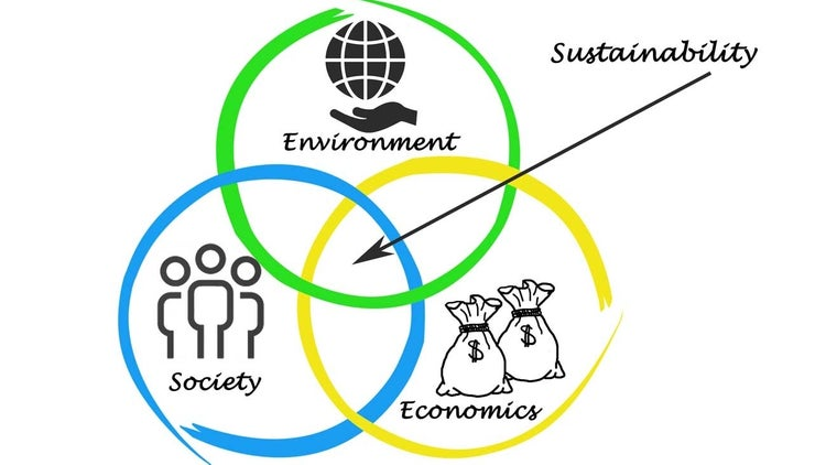 6 effective ways to build a sustainable business