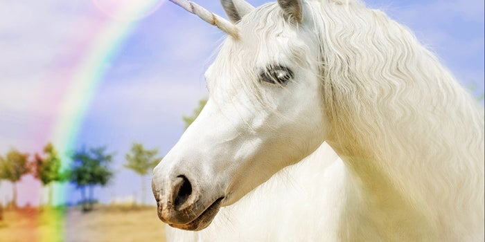 Why the Term 'Unicorn' Needs to Die