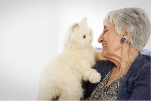 This $100 Lifelike Robotic Companion Cat Is a Toy Made for Seniors