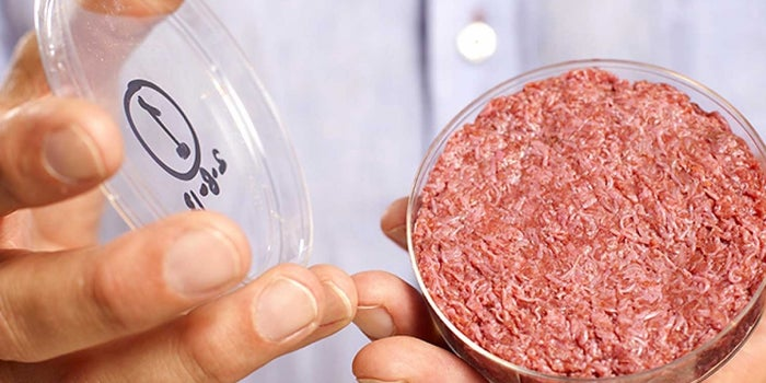'Cultured Beef,' Made From Harvested Cells, Could Solve Growing Global Demands for Meat