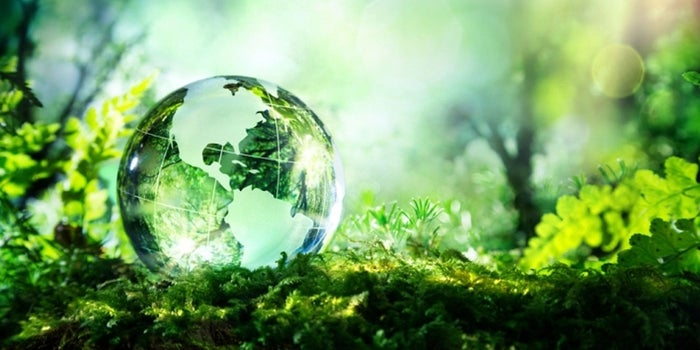 How Going Green Can Grow Your Business
