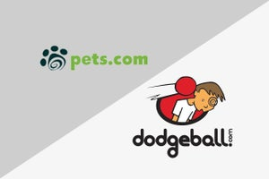 Bad Timing Hurt Pets.com. Dodgeball.com Had No Strategic Plan. Be Aware of the Procession of Startup Pitfalls.