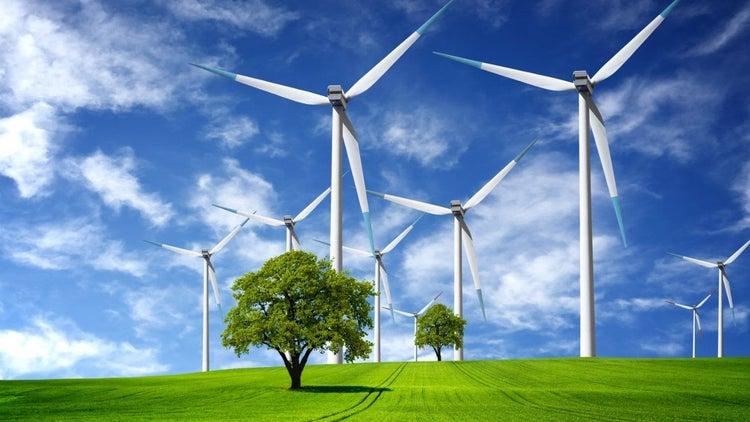 ¿Tienes una empresa verde? Participa en Cleantech Challenge México