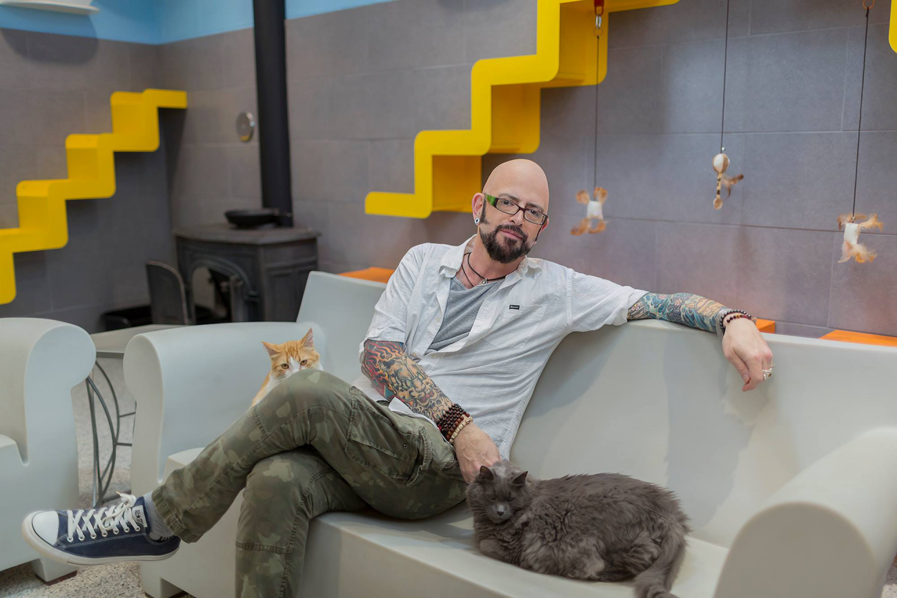 3 sharp business lessons entrepreneurs can learn from cats for Jackson galaxy