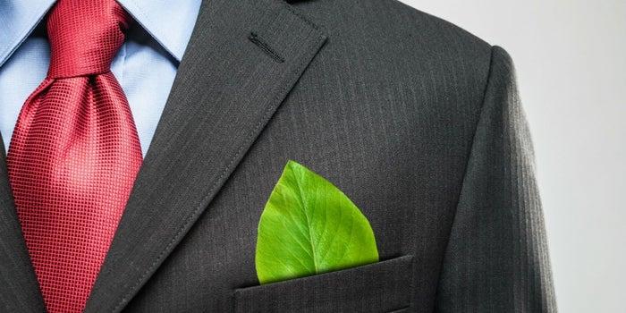 Cómo son los negocios verdes y rentables