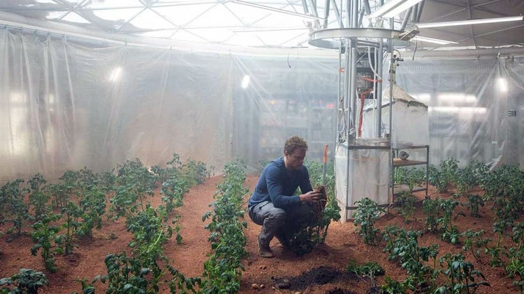 NASA: Maybe Potatoes Could Grow on Mars - Start Up Your Day Roundup