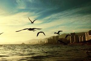 5 Deadliest Luxury Vacation Spots on Earth