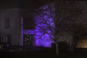 I'm a Huge Prince Fan and Went to Parties at Paisley Park. But Now I Understand How Perfect an Entrepreneur He Was.