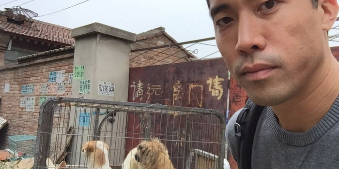 This Entrepreneur Goes Undercover to Rescue Dogs From Torture in Asia