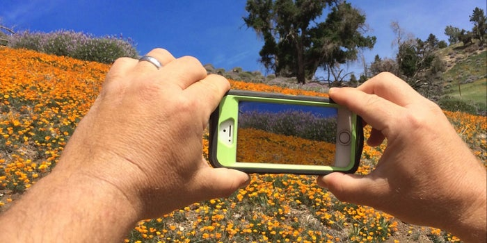 Google Has a New App That Turns Apple Live Photos Into GIFs -- Start Up Your Day Roundup