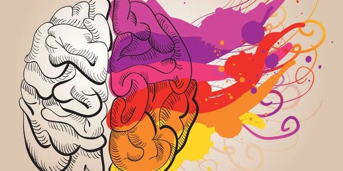 15 factores psicológicos para ganar clientes