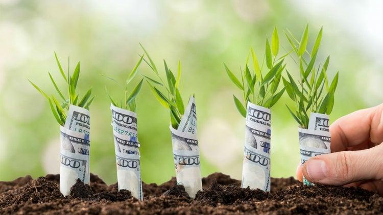 5 formas de conseguir dinero para tu negocio