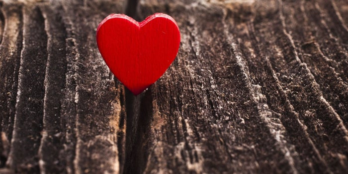 Cómo potenciar la inteligencia emocional de tu equipo