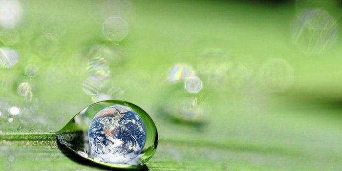 Banamex lanza convocatoria para emprendedores sustentables