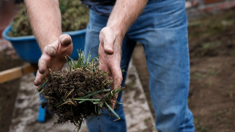 8 Effective Ways to Advertise Your Lawn Care or Landscaping Business