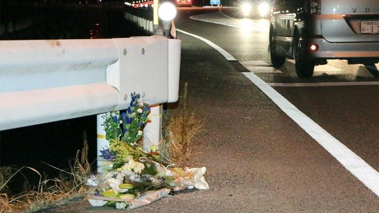 Japanese Truck Driver Playing Pokémon Go Kills Pedestrian