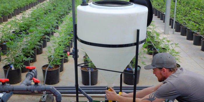 How to Grow a Cannabis Farming Business in the Blazing Marijuana Economy