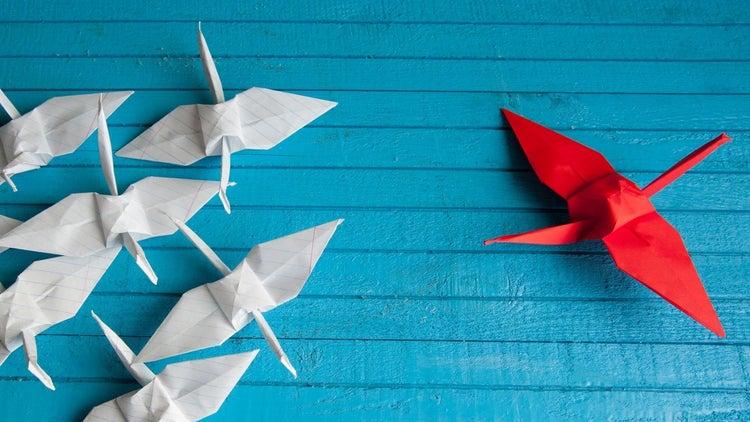 Cómo lograr un liderazgo de alta influencia