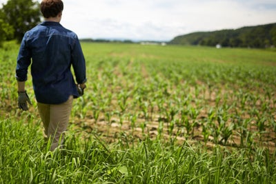 What the American Farm Can Teach Business Leaders About 'Sowing' Succe...