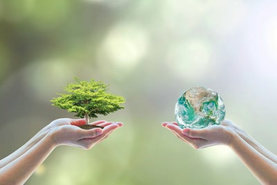 5 Reasons Why Sustainability and Social Issues Attract Customers