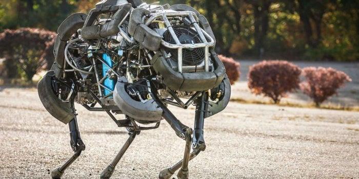 Crean perros robot que sustituirán a repartidores y trabajadores del hogar