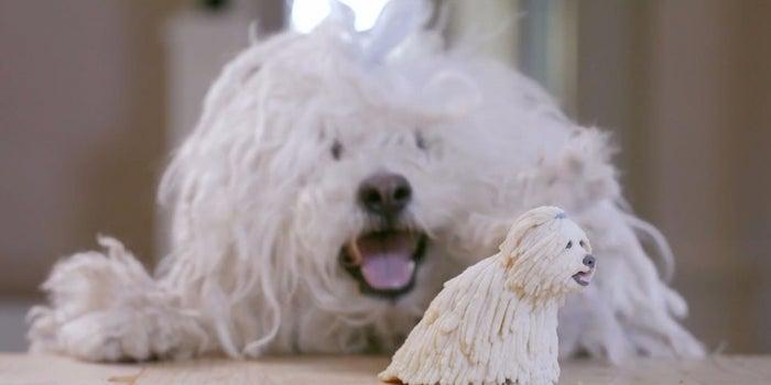 Watch Mark Zuckerberg 3-D-Print a Mini Version of His Dog